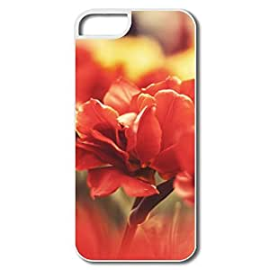 IPhone 5 5S Cases, Memory Covers For IPhone 5S - White Hard Plastic