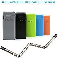 Rucacio Folding Stainless Steel Drinking Straw (Black)
