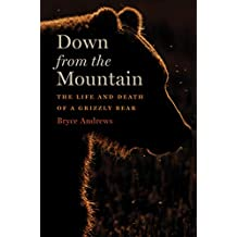 Down from the Mountain: The Life and Death of a Grizzly Bear