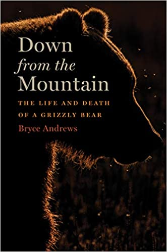 Down From The Mountain The Life And Death Of A Grizzly Bear