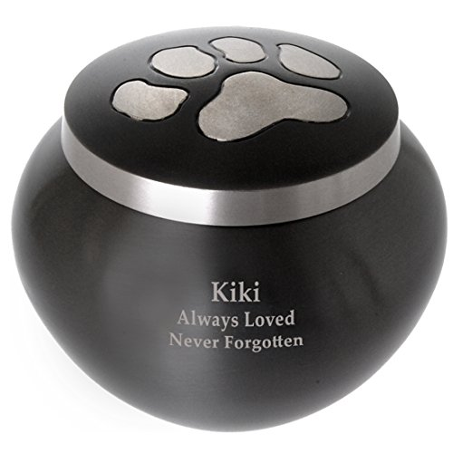 Memorial Gallery Custom Pet Cremation Personalized Brass Urn with Silver Paw Prints, Medium