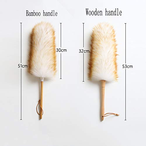ZHANGY Makeup/Role Playing Accessories/Props Dust Scorpion Feather Cleaning The Donkey Can be Used as a Toy,Bamboo Handle by ZHANGY (Image #1)