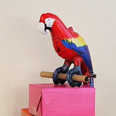 Jet Creations Parrot Inflatable Pet Scarlet Macaw 24