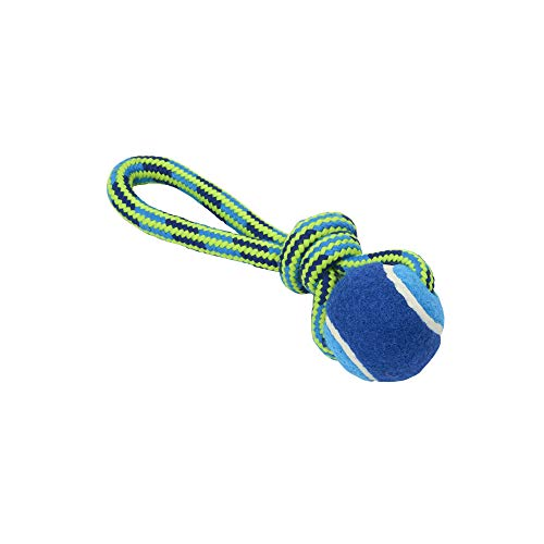 Buster Dog Toys, Tuggaball Handle w/Tennis Ball, Lime, 7 in ()