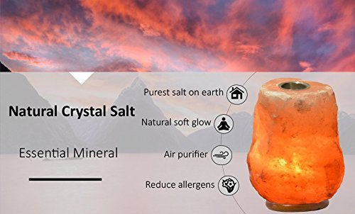 Himalayan Salt Essential Oil Diffuser by Pure Salt Co - Hand Carved Natural Crystal Lamp - Peace from nature-Aromatherapy Salt Lamp with Bulb and Dimmer Bundle by Pure Salt Co (Image #4)