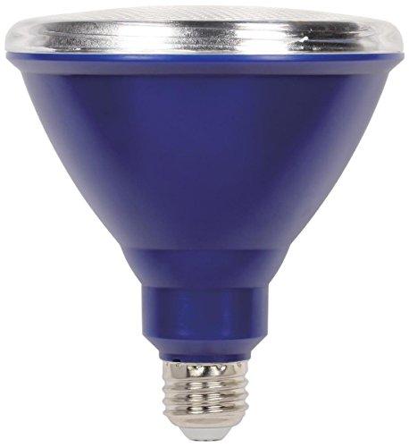100 Blue Led Lights in US - 9