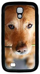 Samsung Galaxy S4 Case TPU Customized Unique Print Design The Puppy Is Carrying The Rose Case Cover For Samsung Galaxy S4