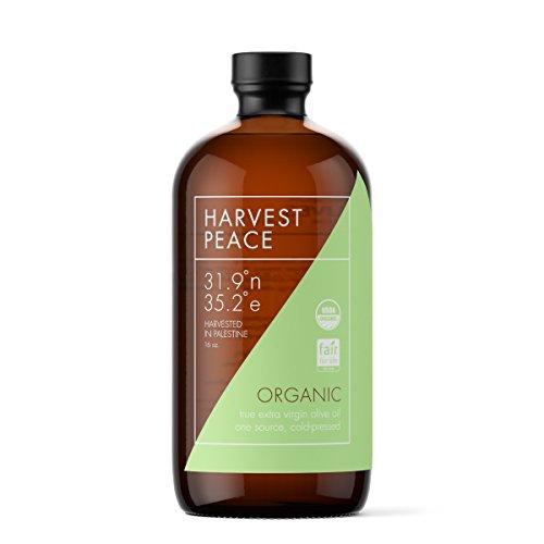 Olive Harvest Olive - 6