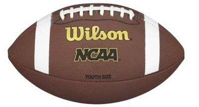 Wilson Tdy Composite Football - NCAA TDY Youth Football