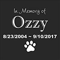 "Personalised Pet Stone Memorial Marker Granite Marker Dog Cat Horse Bird Human 6"" X 6"" Custom Design Personalizd Labrador Golden Retreiver"