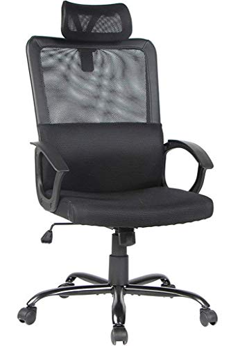 Smugdesk Ergonomic Office Chair Adjustable Headrest Mesh Office Chair Office Desk Chair Computer Task Chair (Black) - 2579]()
