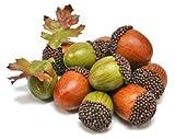 Large Fall Acorn and Leaf Assortment - Total of 24 Acorns