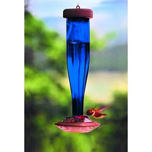 Schrodt Cobalt Blue Lantern Hummingbird Bird Feeder ()