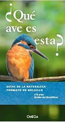 Qué Ave Es Esta? (GUIAS DEL NATURALISTA): Amazon.es: DIERSCHKE, VOLKER, NIETO SILVA, EVA: Libros