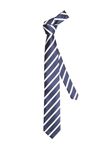 Cravate de Fabio Farini en bleue noire