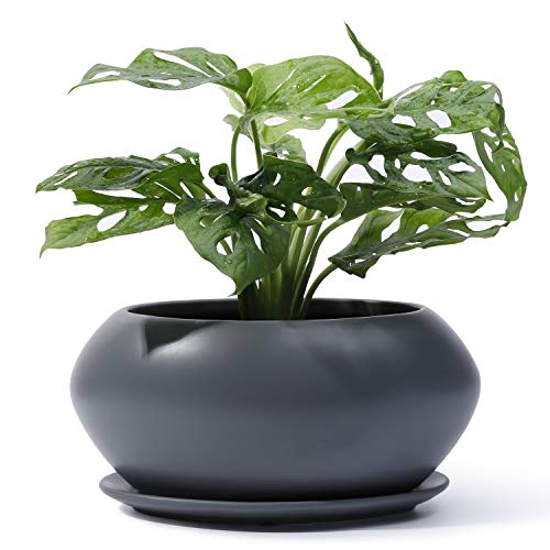 POTEY Ceramic Plant Flower Pots – 6.9 Inch Planter Bonsai Medium Container Large Space – Drain Hole with Saucer, Gray