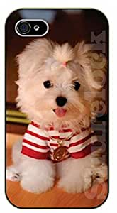 iPhone 6 Case White puppy in red, poodle - black plastic case / dog, animals, dogs