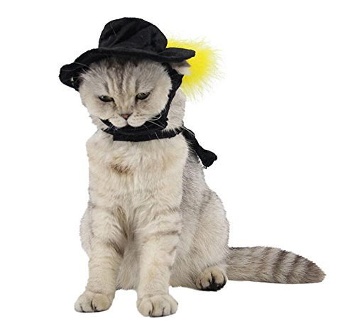 ANIAC Cat Dog Black Hat Cloak Halloween Costume Wizard Witch Cape Poncho for Pets