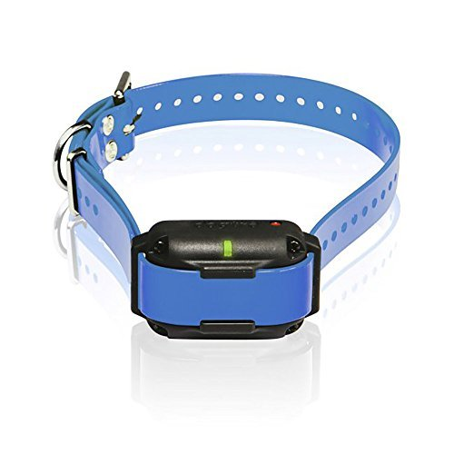 Dogtra Edge RT Trainer Extra Collar - Blue by Dogtra