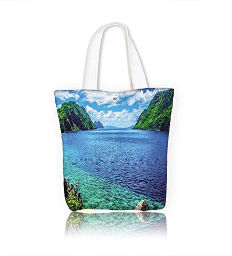 Canvas Tote Handbag Scenic View of sea Bay and Mountain, used for sale  Delivered anywhere in Canada