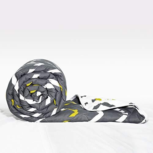 Divine Casa Polyester Blanket/Quilt/Duvet/Comforter Light Easyweight, AC Single Dohar and Comforter