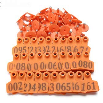 100Sets Orange Animals Cattle Pig Sheep Number Livestock Tags Labels \ Toy Tool Stuff Shop Furniture Dog Unique Large Feeder Gear Gift Leash Accessories Gadget Stylish Pet Supplies Puppy Generic