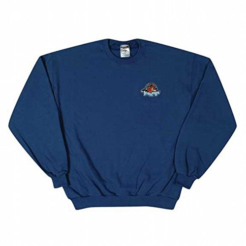 Sweatshirt Rockford - Rockford IceHogs Embroidered Logo Youth Sweatshirt - Youth Medium
