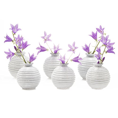 Chive - Smasak, Small Round Glass Flower Vase, Decorative Rustic Floral Vase for Home Decor Living Room Centerpieces and Events, Single Flower Bud Vase -  Bulk Set of 6 (White) (Vases White Bud)