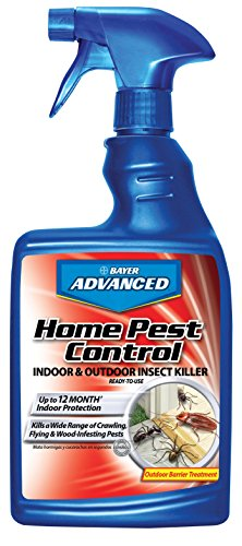 Price comparison product image Bayer Advanced 502790 Home Pest Control Indoor and Outdoor Insect Killer Ready-To-Use, 24-Ounce
