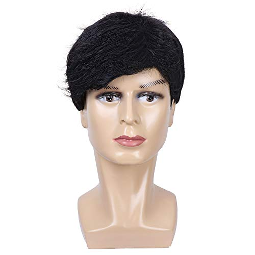 Mens Male Wigs Short Layered Black Wigs Natural Looking Side Part Synthetic Wigs for Guy's Daily Use Costume Halloween Wig ()