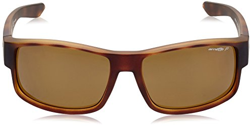Sonnenbrille Arnette AN4224 Havana BOXCAR Fuzzy gwqd08w