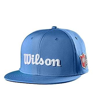 Wilson Golf Gorra Plana W/S, Para Hombre, Azul, Visera Plana ...