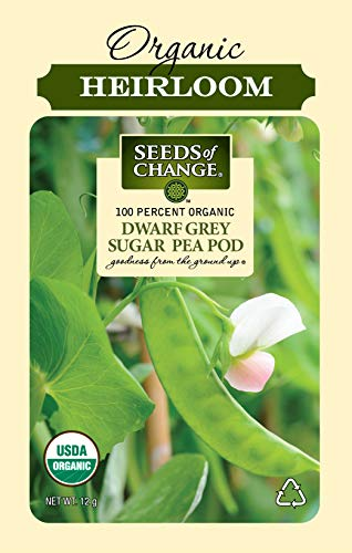 - Seeds Of Change 8268 Pod Dwarf Grey Pea, Organic, Seeds Green