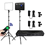 2 Packs VILTROX LED Panel Light with Stand Kit, (30W/2450Lux) Bi-Color Dimmable Studio Photography Video Lighting kit CRI95+ for Wedding News Interview YouTube Live Video