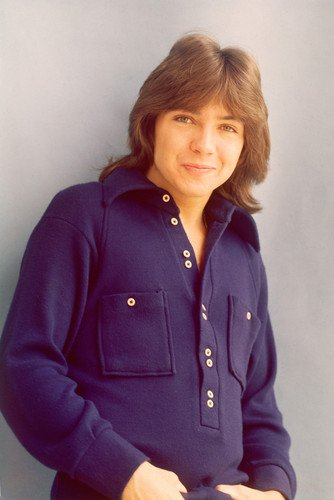 David Cassidy Partridge Family Color 24X36 Poster Silverscreen