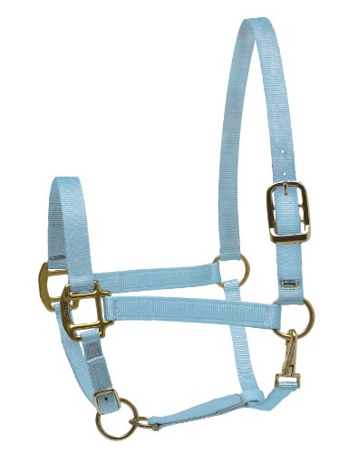 Buy cob nylon halter