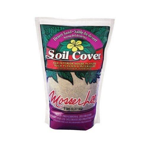 Casavidas Seeds: er Lee 1110 Desert Sand Decorative Soil Cover, 1.5 Quart