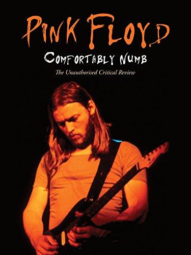 Pink Floyd   Comfortably Numb