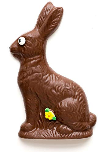 Thats One Decadent Easter Bunny >> Amazon Com Solid Chocolate Easter Bunny Rabbit 8 Oz Best
