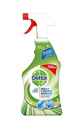 Dettol Mould and Mildew Remover Spray 750 ml by Dettol