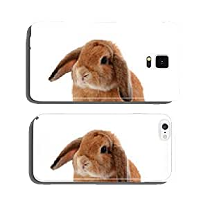 rabbit isolated on a white background cell phone cover case iPhone5