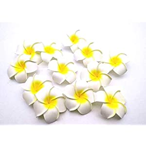 Satyam Kraft Hawaii Artificial Flowers for Decoration (Pack of 24)