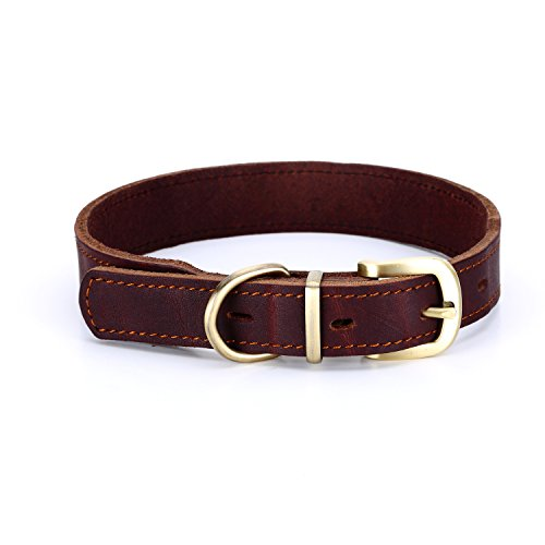 Very nice quality! Nice thick leather. Will not bend or break. Very satisfied.