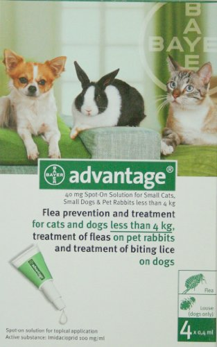 Advantage For Cats, Dogs and Rabbits Upto 9lbs (4kg) 4 Pack, My Pet Supplies