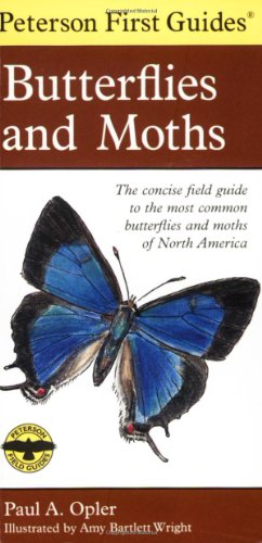 peterson-first-guide-to-butterflies-and-moths