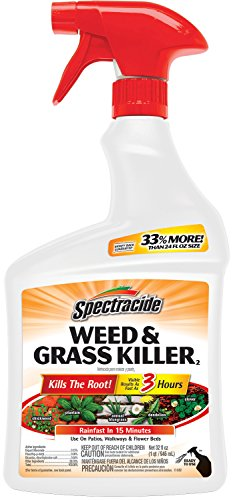 Spectracide Weed & Grass Killer2 (Ready-to-Use) (HG-96428) (32 fl oz) (Spectracide Weed And Grass Killer)