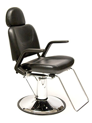 BR Beauty Sue Professional Salon All-Purpose Chair by BR Beauty