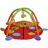 Sunbaby Lovely Lady Bird Playmat (Multicolor)