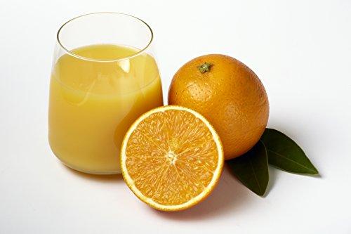 valencia-oranges-1-tray