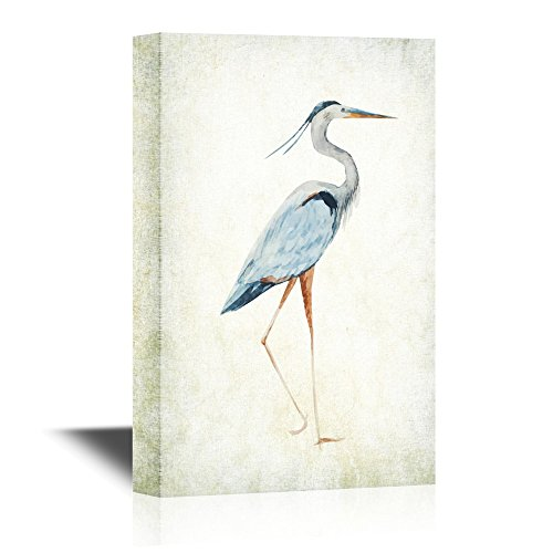 Heron Bird Wild Animal Gallery